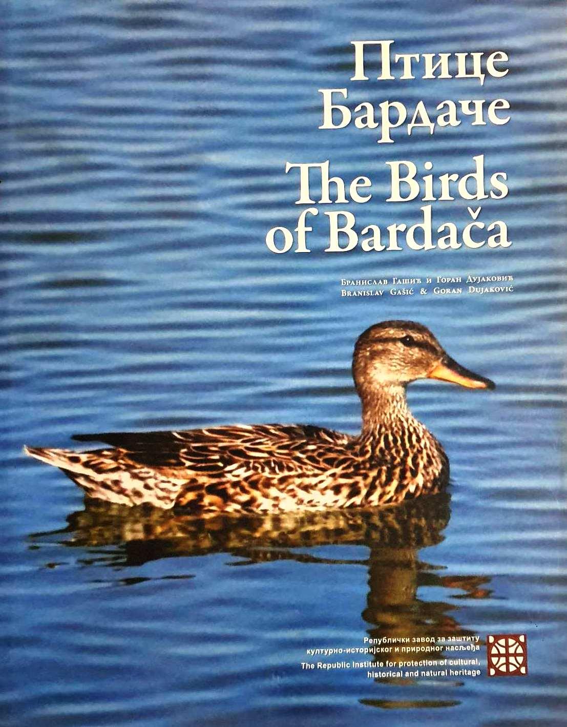 ptice bardače