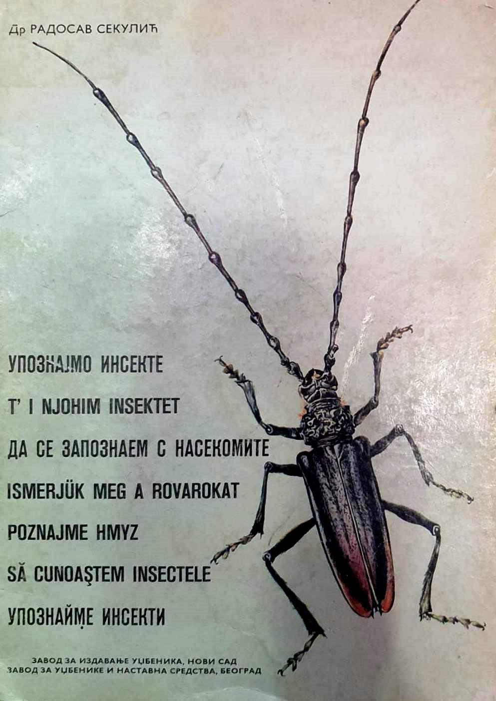 upoznajmo insekte